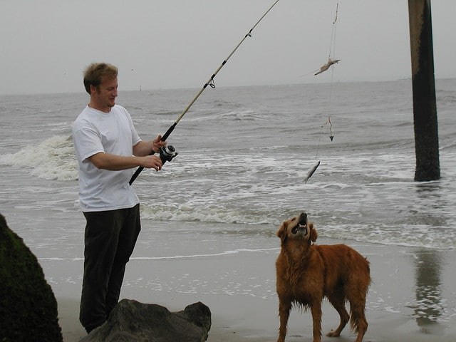 go fishing with golden retriver